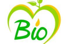 Des marques de produits de beauté bio made in France